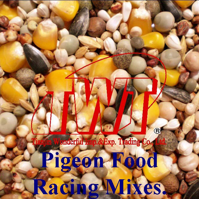 Pigeon Food for Racing Type